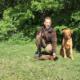 Hundetræning fra hvalp til voksen hund
